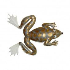ISCA ARROW FROG 3.5CM SUPERFICIE 3.6G FLUTUANTE MARINE SPORTS