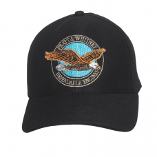 BONÉ USAF PRATT & WHITNEY (Ref.:201)